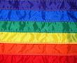 Image thumbnail of LGBTIQA+ Human Rights Network